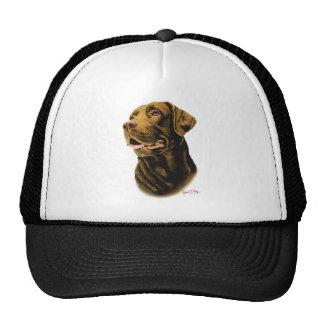 Chocolate Labrador Retriever Mesh Hat
