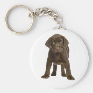 Chocolate Labrador Retriever Puppy Dog Keychain