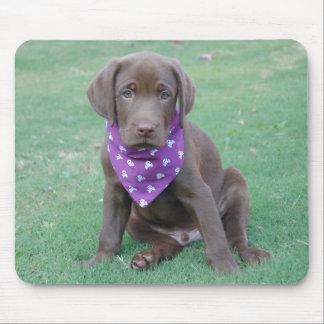 Chocolate Labrador Retriever Puppy Mousepad