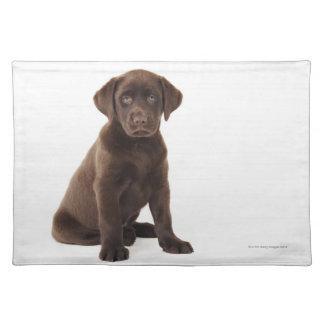 Chocolate Labrador Retriever Puppy Placemat