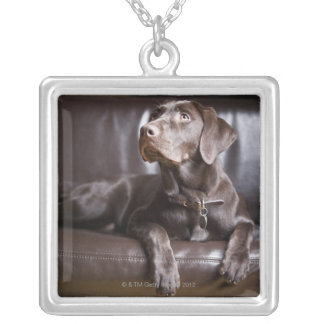 Chocolate Labrador Retriever Silver Plated Necklace