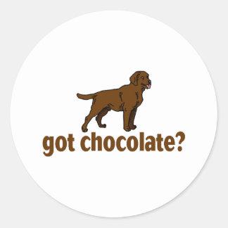 Chocolate Labrador Round Sticker