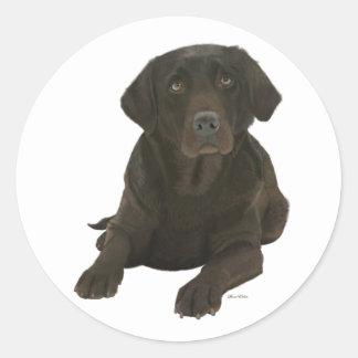 Chocolate Labrador - Sticker