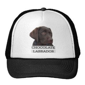 Chocolate Labrador Unique design! Trucker Hats