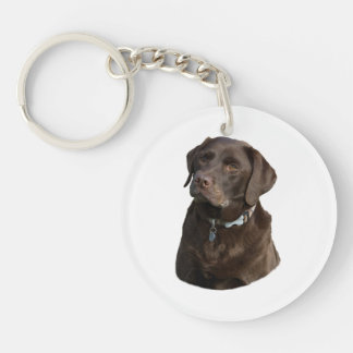 Chocolate Labradors dog photo Acrylic Key Chains