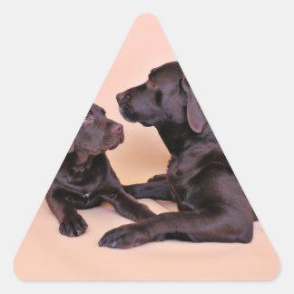 Chocolate Labradors Triangle Sticker