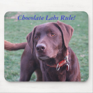 Chocolate Labs Rule! Mouse Mat