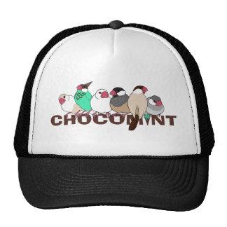 Chocolate mint java sparrow mesh hat