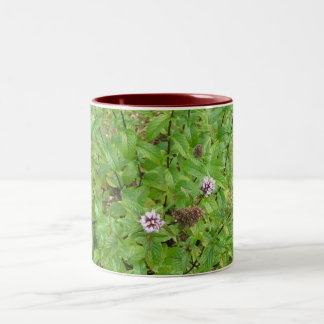 Chocolate Mint Two-Tone Coffee Mug