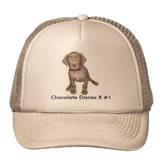 Chocolate Pup Sitting Cap