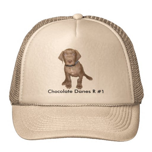 Chocolate Pup Sitting Trucker Hat