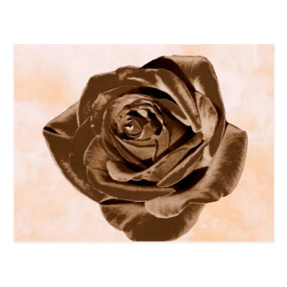 Chocolate Rose pattern collection Postcard