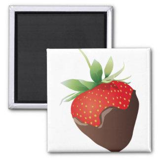 Chocolate Strawberry Fridge Magnets