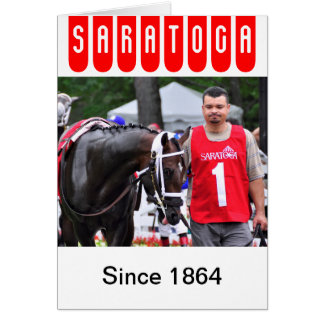 Chocolate Wildcat in the 100th Sanford Stakes Card