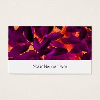 Choisya Autumn 3 business card stripe white