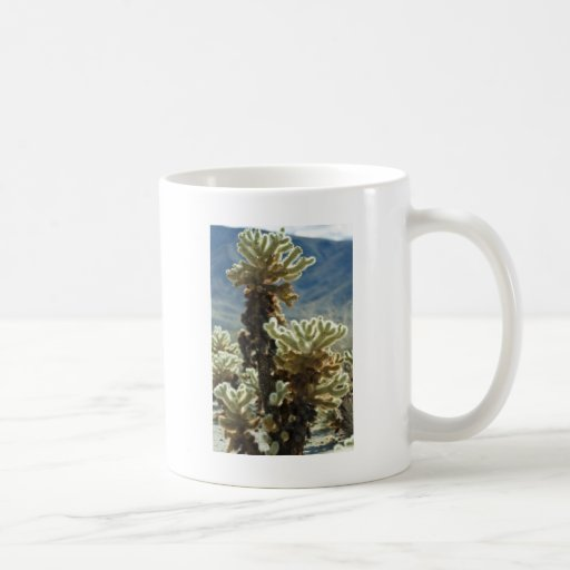 Cholla Afternoon Basic White Mug