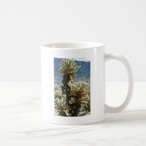 Cholla Afternoon Basic White Mug