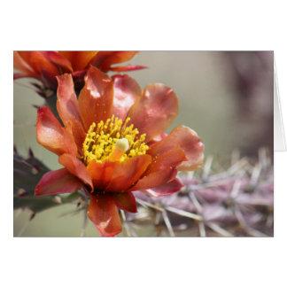 Cholla Bloom Greeting Card