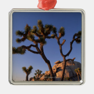 Cholla cactus and Cap Rock , Joshua Tree Christmas Ornament