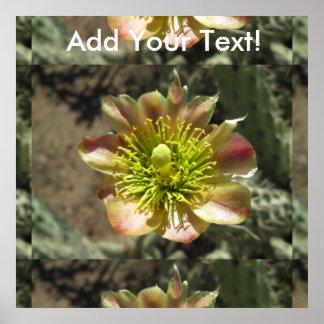 Cholla Desert Flower Bloom Poster