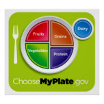 Choose My Plate Poster - in many sizes