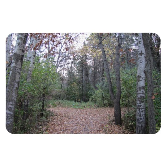 Choose your path. rectangular photo magnet