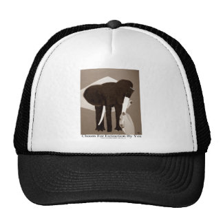 Chosen For Extinction By You, Elephant Poaching, Cap