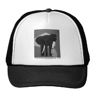 Chosen For Extinction By You, Elephant Poaching Hats