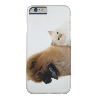 Chow Chow and a White Cat Sitting Together Barely There iPhone 6 Case