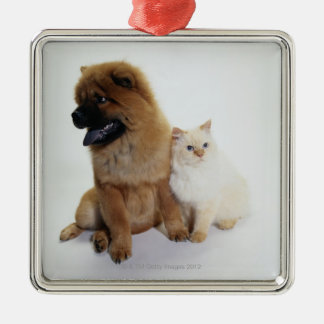 Chow Chow and a White Cat Sitting Together Silver-Colored Square Decoration