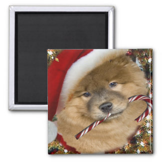 Chow Chow Christmas Candy Cane gifts Square Magnet