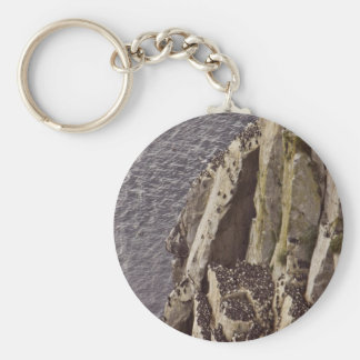 Chowiet Island murre colony Basic Round Button Key Ring