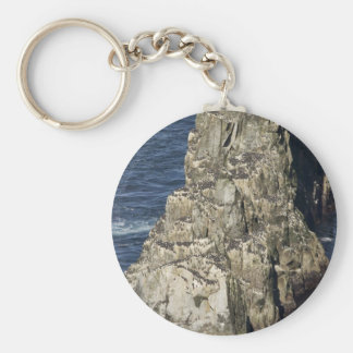 Chowiet murre colony basic round button key ring