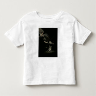 Christ on the Mount of Olives, 1819 Toddler T-Shirt