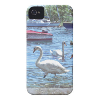 christchurch harbour swans and boats Case-Mate iPhone 4 case