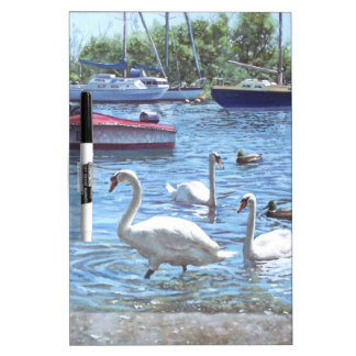 christchurch harbour swans and boats dry erase board