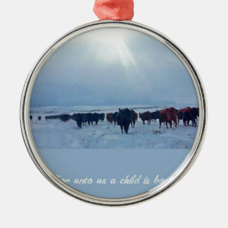 Christian western art of cattle and cows christmas ornament