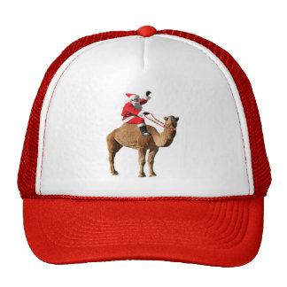 Christmas 2013 Hump Day Camel and Santa Hat