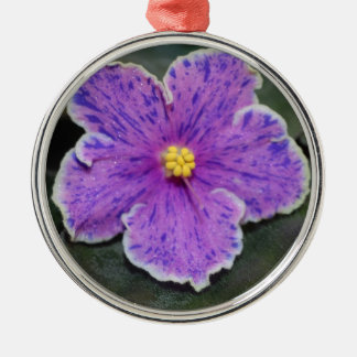 Christmas African Violet ornament