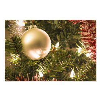 Christmas Ball Ornament Photographic Print