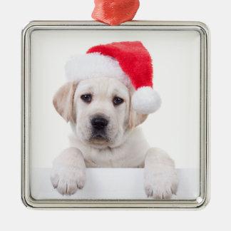 Christmas Banner Dog Christmas Ornament