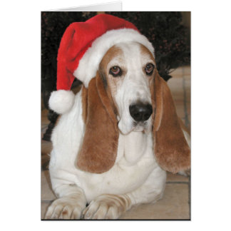 Christmas Basset Card-Blank Inside Greeting Card