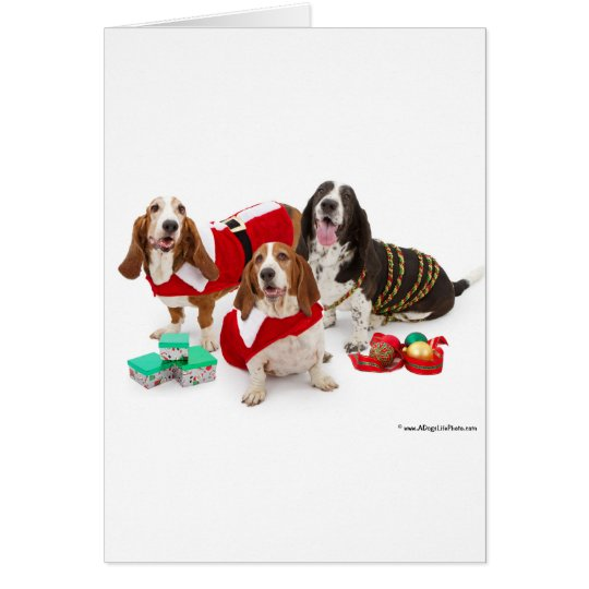 christmas basset hound card