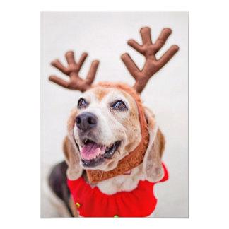 Christmas Beagle dog with festive reindeer ears 13 Cm X 18 Cm Invitation Card