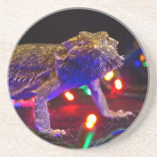 Christmas Beardie Coaster
