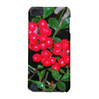 Christmas Berries iPod Touch 5G Case