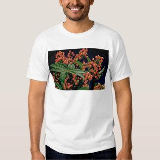 Christmas berry tree (Schinus terebinthifolius) Shirt