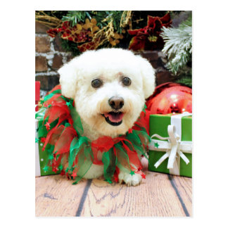 Christmas - Bichon Frise - Butler Post Card