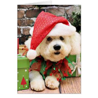 Christmas - Bichon Frise - Daisy Greeting Card