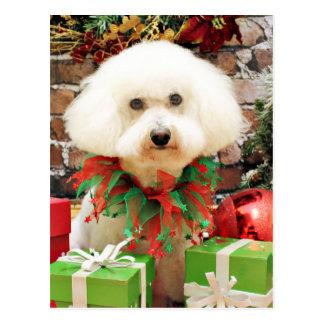 Christmas - Bichon Frise - Harley Postcard